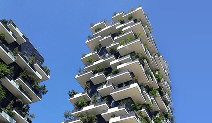 que es un bosque vertical